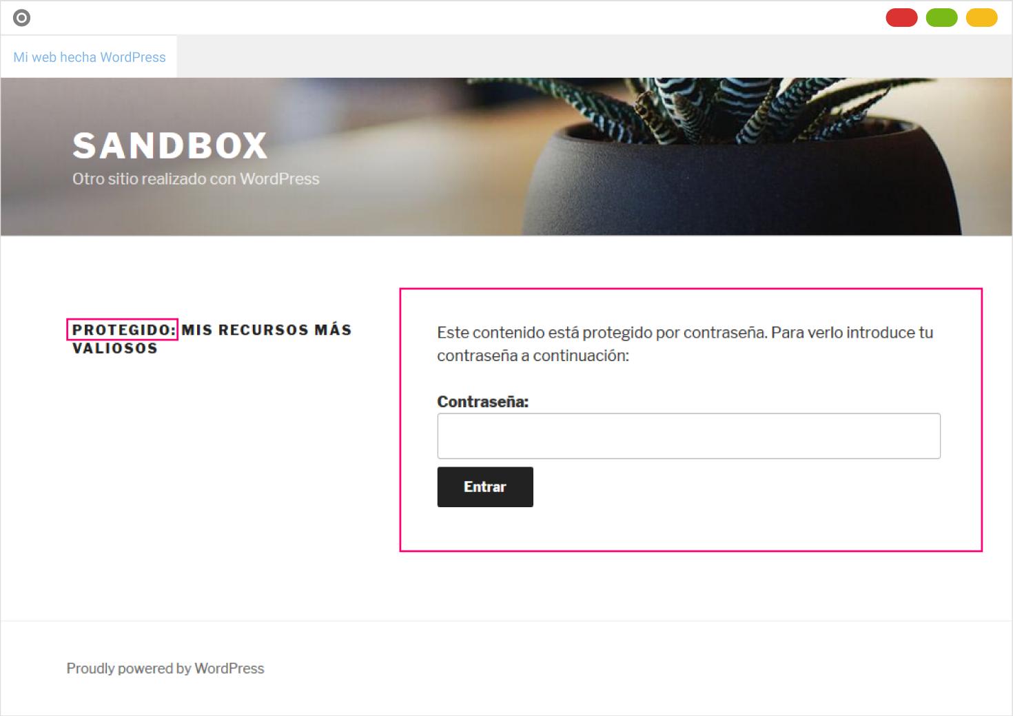 Ejemplo de página protegida con contraseña en WordPress